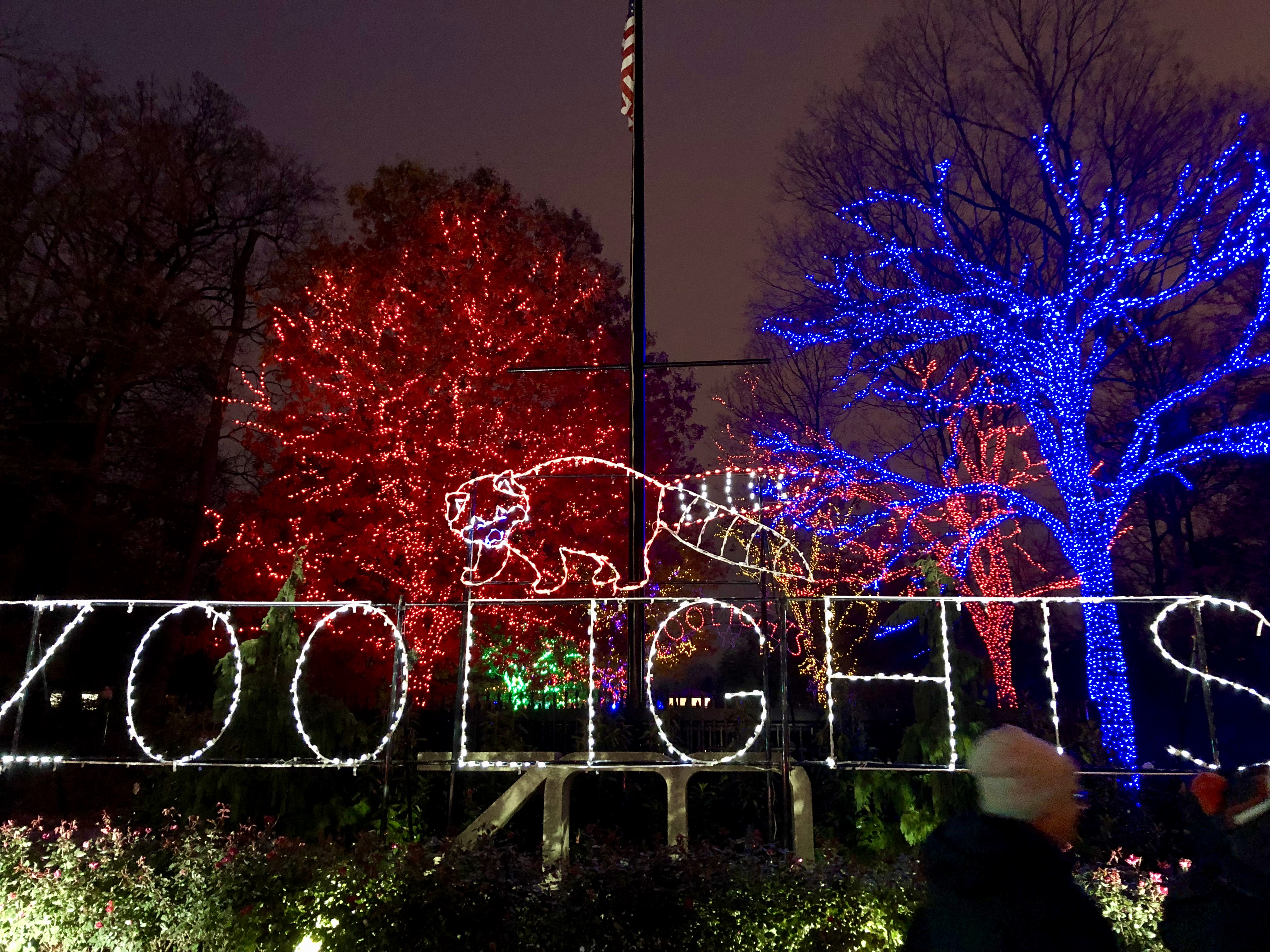 Holiday season activities for visitors